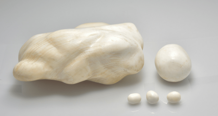 Investigating Fake Pearls Made from Tridacna Gigas Shells