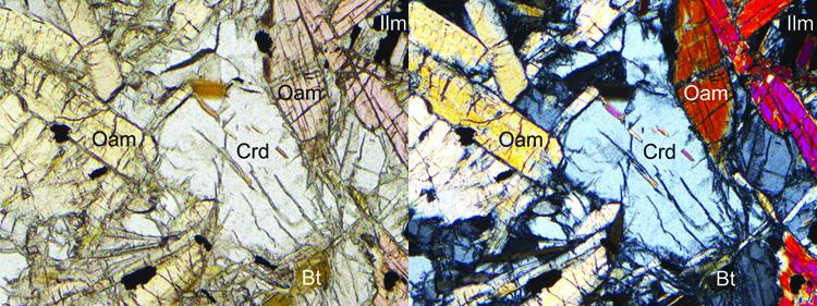 Mineral composition thin section Nuummite. Image courtesy L. Franz