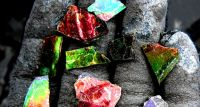 Investigating Ammolite with Canadian Mining Specialist Korite